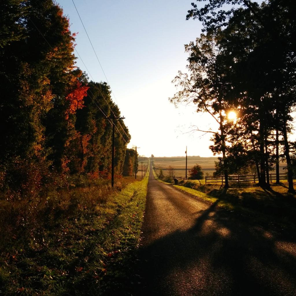 ohio-first-walk
